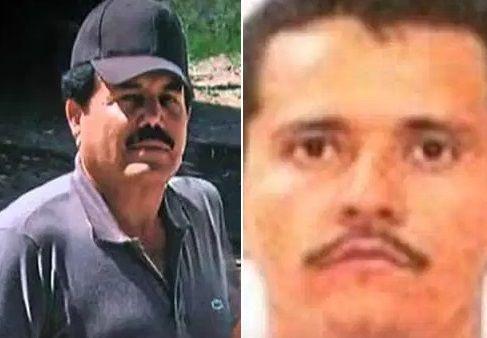 Las garras del Cártel de Sinaloa y el CJNG en Holanda