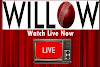 willow live cricket