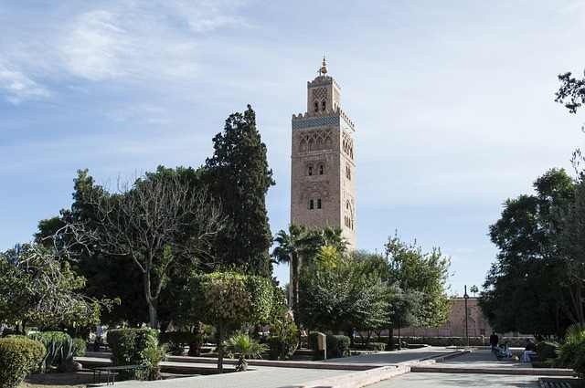 top 10 best places to explore in africa, marrakech flights, marrakech morocco hotels, marrakech hotel, marrakech market, marrakech to casablanca, marrakech best restaurants, marrakech jacket, marrakech map, marrakech, marrakech morocco, marrakech weather, marrakech restaurants, marrakesh express, marrakech airport, marrakech best hotels, marrakech clothing, africa map, africa, african, africa country, african countries, africa flag, african grey parrot, african elephant, africa song, africa twin, africa capital, african union, africa time, africa currency, african parrot, africa jungle,