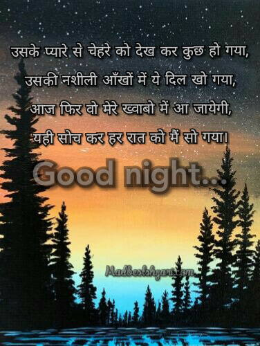 Images Of Good Night Shayari