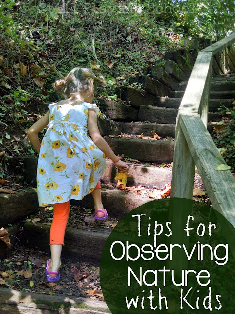 Tips to help the whole family enjoy being outside to observe nature from Still Playing School