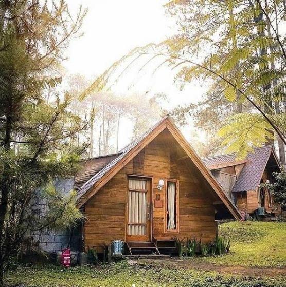 glamour camping grafika cikole