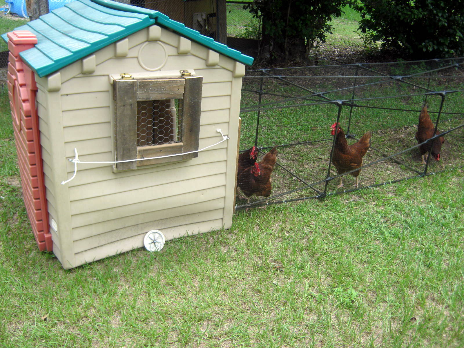 eclectic technique making a chicken tractor from re purposed items