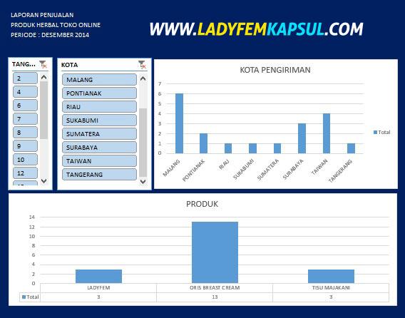 contoh laporan dashboard excel, ms excel dashboard,