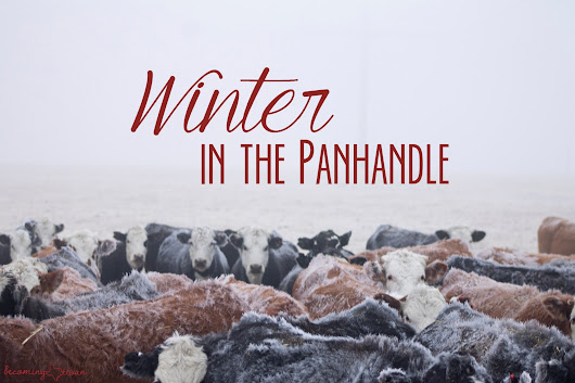 Winter in the Panhandle