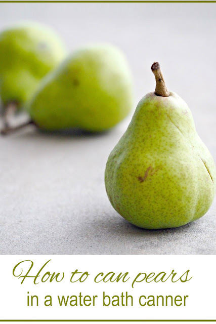 How to can pears in a water bath canner.