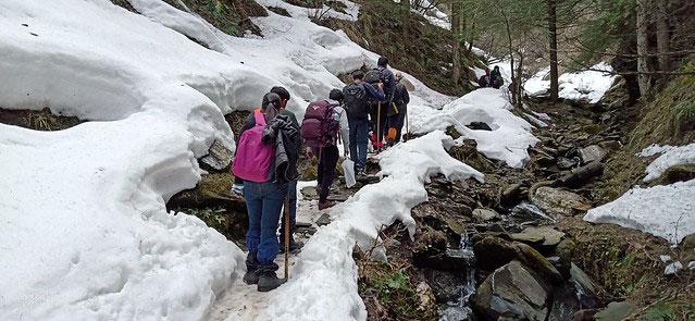 www.yourtravel.ooo-himachal-pradesh-Prasher-Lake
