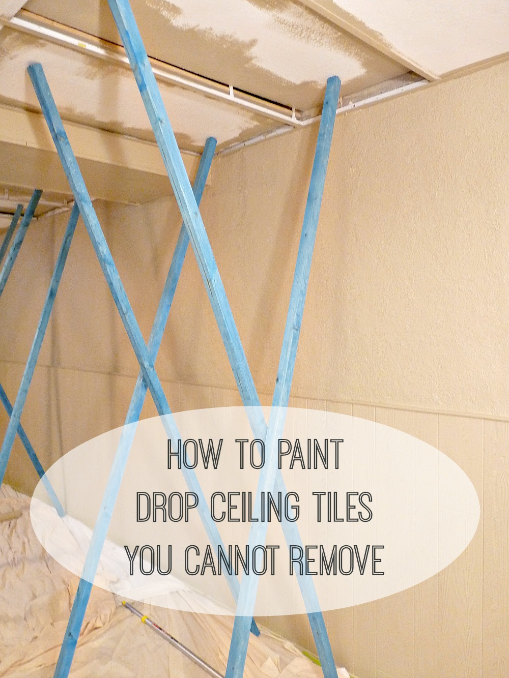Basement update how to paint drop ceilings you cannot remove dans quick tip for painting ceiling tiles you cannot remove dailygadgetfo Image collections
