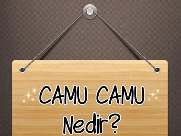 Camu Camu Tozu Nedir?