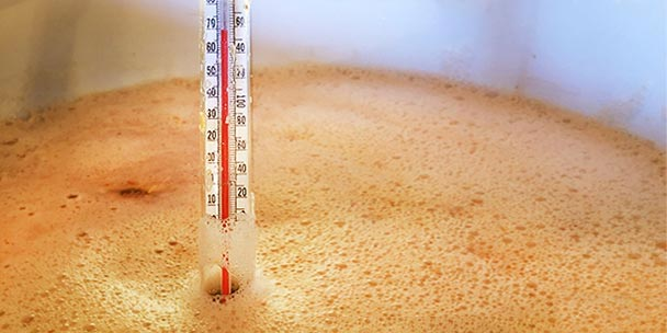 best - measuring the temperature of beer with a thermometer