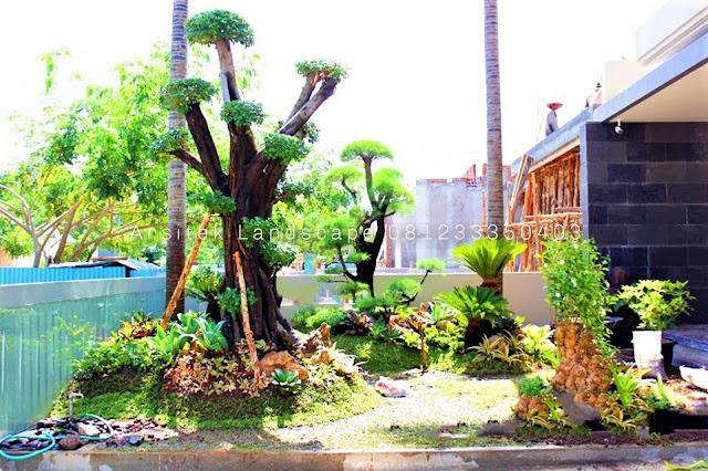 Jasa Tukang taman depan rumah dan pembuatan taman murah