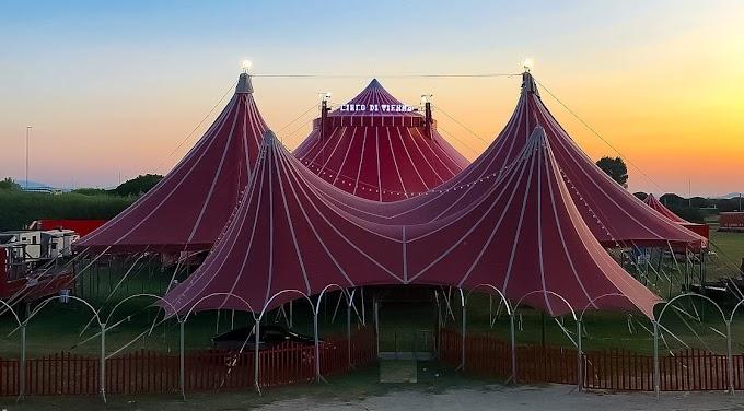 """Circo Di Vienna: """"Contro di noi solo falsità, venite a vedere"""""""