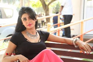 Telugu Actress Harini Stills at Dhyavudaa Movie Teaser Launch  0411.JPG