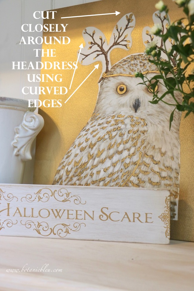 Trim closely around an owl's whimsical headdress using curved edges