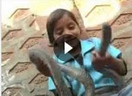 meet-this-little-girl-also-famous-as-vishkanya-image