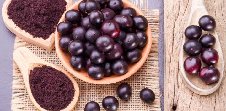 Açaí pode prevenir hipertensão renovascular revela novo estudo