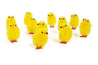 Keuntungan Bisnis Ternak Ayam Potong Dan Pangsa Pasarnya