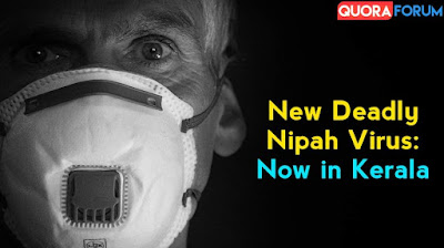 Nipah Virus: 12 year old child dies from Nipah virus in Kerala, know How to avoid this deadly Virus
