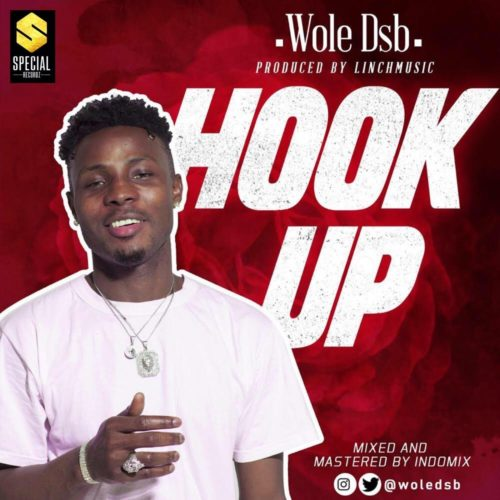 Wole Dsb Hook Up Music and Video