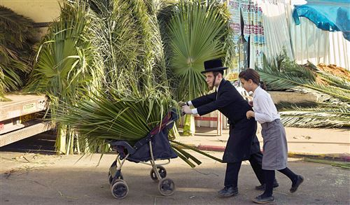Best Jewish Festival Sukkot Children