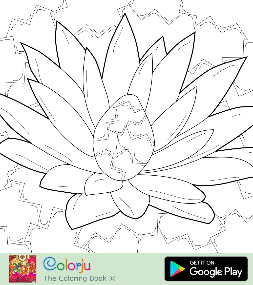 Coloring Pages D: Floral Coloring Pages