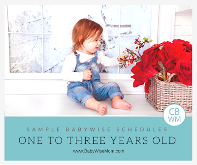 Sample Babywise Schedules for Toddlers: One to Three Years Old