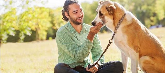 Πρόσεχε τα λόγια σου... μας ακούει ο σκύλος!