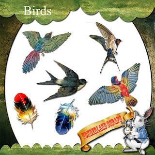 https://1.bp.blogspot.com/-Vn_tlUP5WJ8/XtAjwFYHC7I/AAAAAAAAKnc/NKyNcOBpu54wy0ETWnJJPGmsoyCJa1evwCLcBGAsYHQ/s320/WS_pre_Birds.jpg