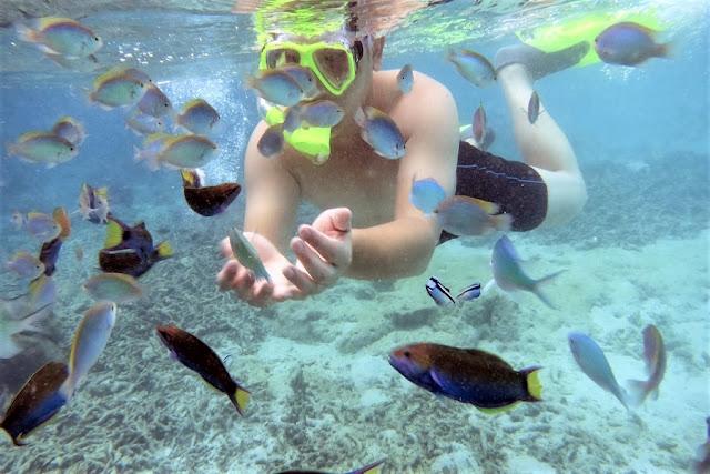Pulau Harapan Private Trip