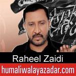 https://www.humaliwalayazadar.com/2019/10/raheel-zaidi-nohay-2020.html