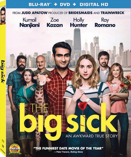 The Big Sick (Un Amor Inseparable) (2017) 720p y 1080p BDRip mkv Dual Audio AC3 5.1 ch