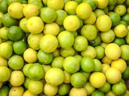 gudur lemon market