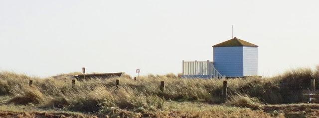 seasidestudiosblog.blogspot.com