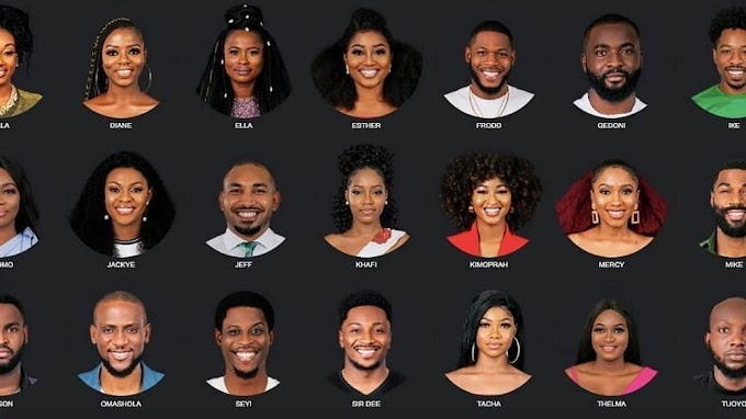 How to Vote your Housemates for BBNaiija 2019