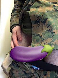 slike-lepog-kurca-od-uniformisanog-vojnika