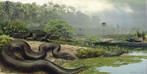 Titanoboa con un dirosauro e una tartaruga. ( Jason Bourque/Università della Florida )