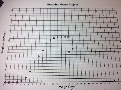 graphing grass linear equations algebra project day 17 graph