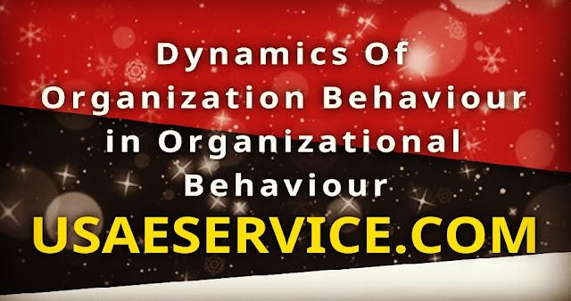 The Dynamics Of Organization Behaviour in OB