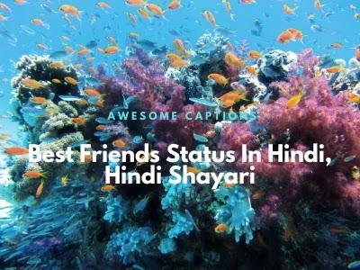 Best Friends Quotes In Hindi 2020 - Dosti Shayari