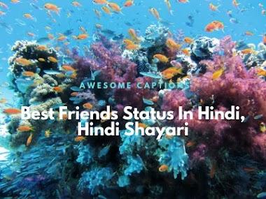 267+ Best Friends Quotes In Hindi 2020 - Dosti Shayari