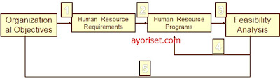 Example of the Basic Human Resources Planning Model