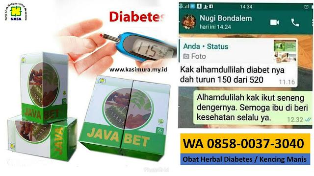 Jual Obat Diabetes Alami Pasi Raja