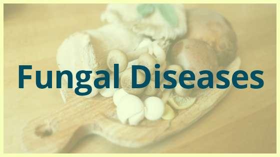 Human Disease and health