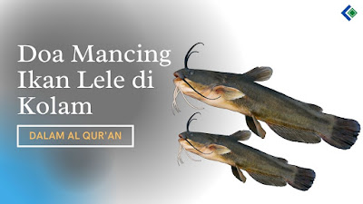 Doa Mancing Ikan Lele di Kolam Dalam Al Quran