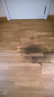 Perros y gatos vs suelos de parquets tarimas y laminados - Como quitar rayones del piso vinilico ...