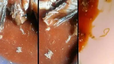 yang telah beredar di masyarakat lantaran ditemukannya Parasit Cacing di dalam kemasan 3 Fakta Mengejutkan Mengenai Cacing di Sarden Kalengan