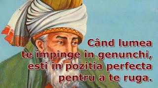 rumi citate celebre de iubire prieteni cuvinte motivaționale pentru succes