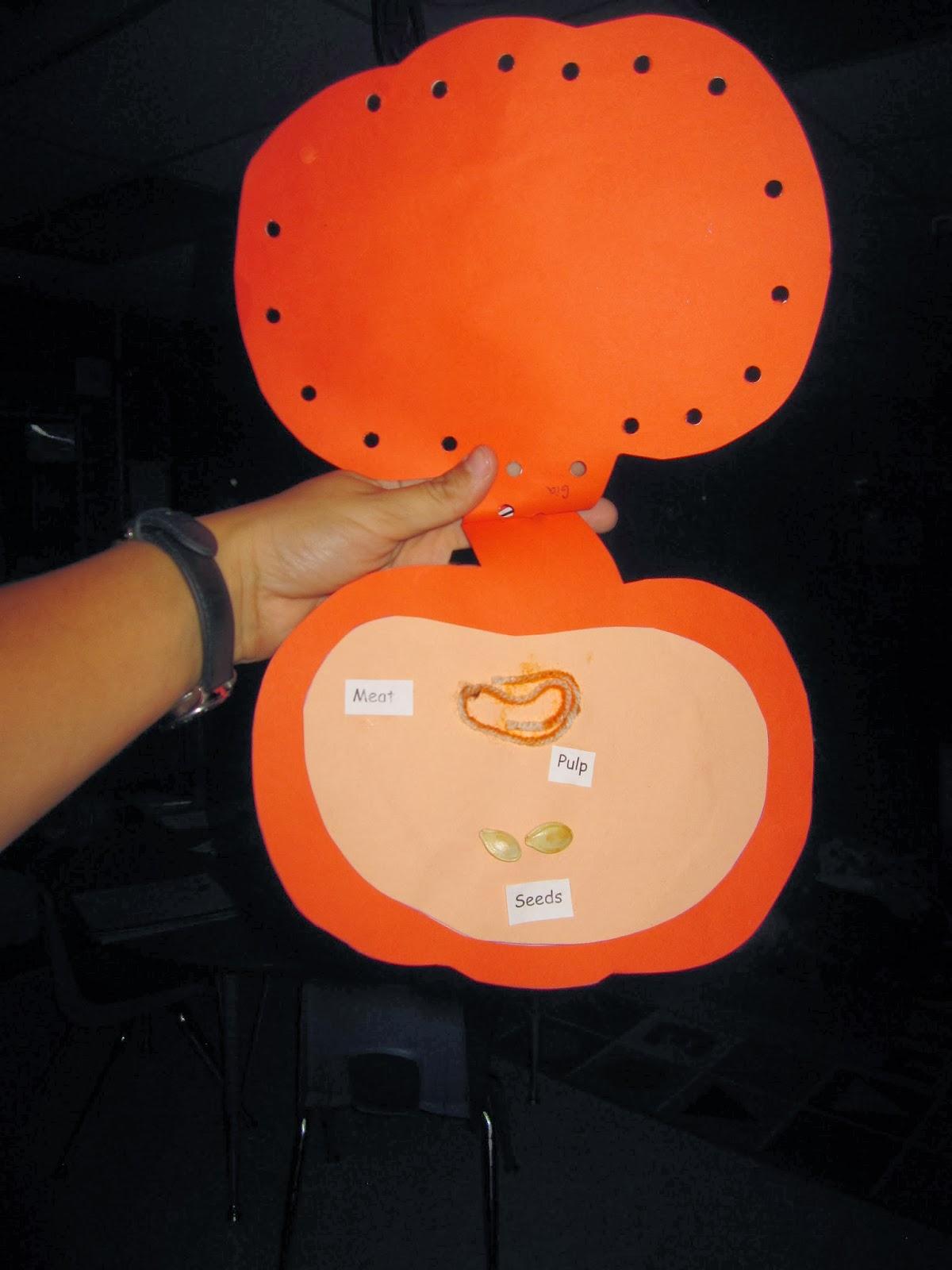 Preschool For Rookies What Inside A Pumpkin