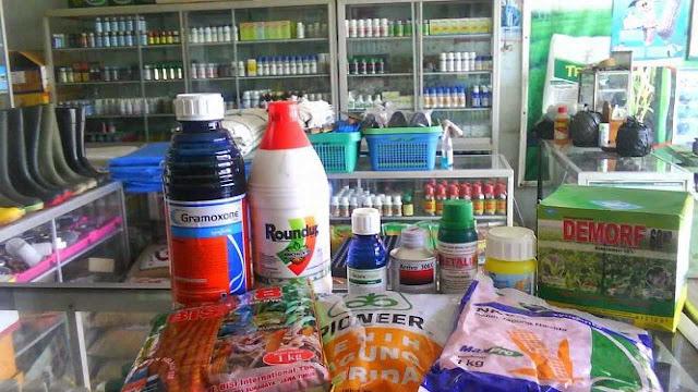 bisnis pertanian modal kecil di desa