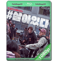 #VIVO (2020) WEB-DL 1080P HD MKV ESPAÑOL LATINO